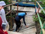 kondisi-jembatan-hutan-mangrove-kuala-tungkal.jpg