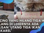 kucing-hilang-dengan-tulisan-utang-ikan.jpg