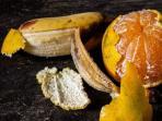 kulit-jeruk-dan-kulit-pisang_20160408_103035.jpg
