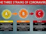 mutasi-varian-virus-corona-sars-cov-2-penyebab-covid-19dailymail.jpg