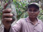 petani-kakao-di-muarojambi-kini-tidak-lagi-bisa-merasakan-nikmatnya-kakao.jpg