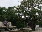 pohon-sukun-dan-monumen-bung-karno-di-pinggir-pantai_20181022_204846.jpg
