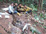 selama-5-jam-ular-piton-6-meter-yang-gegerkan-dusun-rantau-pandan-akhirnya-berhasil-dievakuasi.jpg