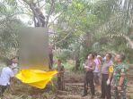 seorang-pria-ditemukan-tergantung-di-sebuah-pohon-di-desa-m.jpg