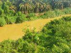 sungai-batang-pelepat-keruh-tercemar-peti.jpg