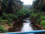 sungai-kandang-yang-berada-di-desa-tanjung-lebar-kecamatan-bahar-selatan.jpg