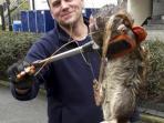 tikus-raksasa-ditemukan-oleh-tony-smith-dan-temannya-james-hijau-swns_20160403_222554.jpg