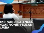 vanessa-angel-dituntut32.jpg