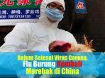 video-belum-selesai-virus-corona-flu-burung-kembali-merebak-di-china.jpg
