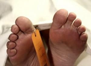 BREAKING NEWS : Kamidi Temukan Mayat Membusuk, Wajah Penuh Belatung dan Bau Busuk Menyengat