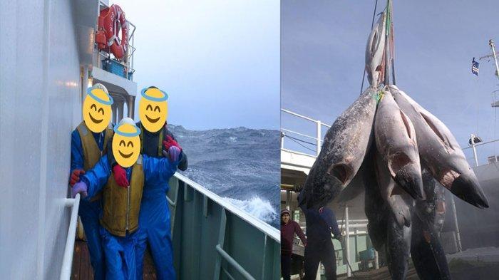 Viral Kisah Ali 3 Tahun Jadi ABK Kapal Tuna Jepang, 10 Jam Berdiri Angkat Ikan 200 Kilogram