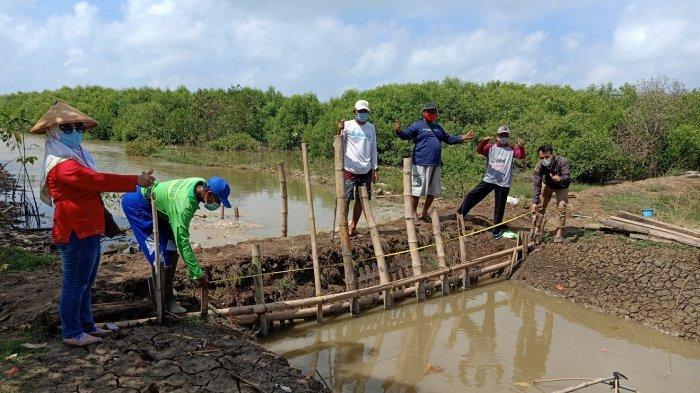 Pemkab Pati Serius Kembangkan Sektor Perikanan Budidaya Nila Salin
