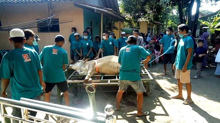 Alat yang dijadikan untuk menyembelih hewan kurban di Dukuh Pegandon Lor, Desa Pegandon, Kecamatan Karangdadap, Kabupaten Pekalongan, Jawa Tengah