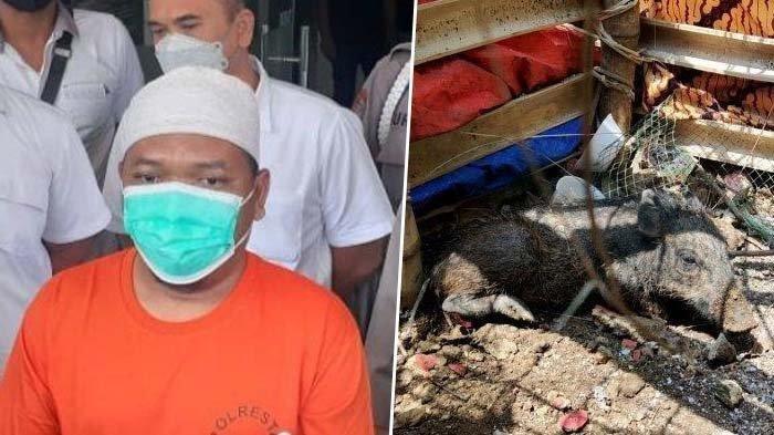 Inilah Sosok Adam Ibrahim Ustaz Depok Perekayasa Babi Ngepet: Biar Terkenal, Jamaah Taklim Bertambah