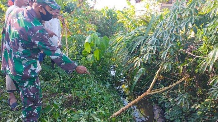 Babinsa bersama masyarakat saat hendak melakukan penangkapan terhadap seekor ular piton berukuran besar di kawasan Gampong Baro, Kecamatan Setia Bakti, Aceh Jaya, Kamis (15/4/2021).