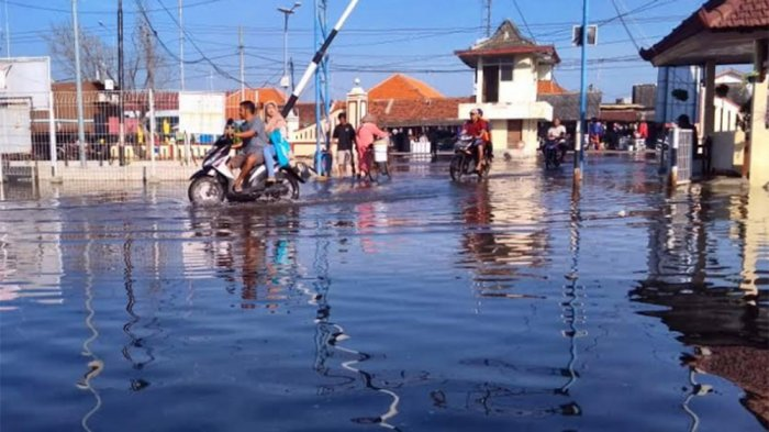 Cuaca Panas, Tapi Banjir Rob Menggenangi Pekalongan Utara Setinggi Ini