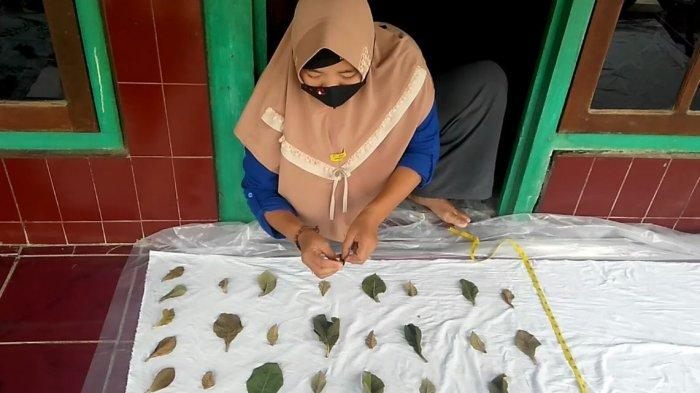 7 Perempuan Eks Pekerja Migran Asal Kendal Kembangkan Kerajinan Batik dari Daun