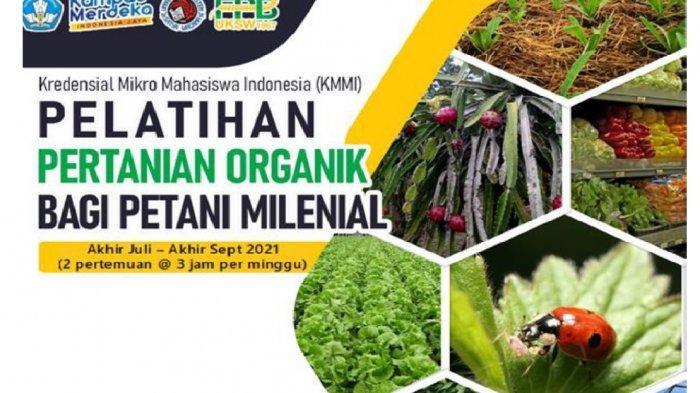Berminat Menjadi Petani Organik Milenial? Yuk Daftar KMMI POM