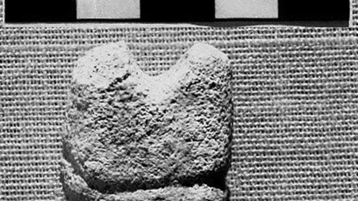 Ditemukan, Bidak Catur Tertua Dunia, Diperkirakan Berusia 1.300 Tahun, Begini Penampakannya