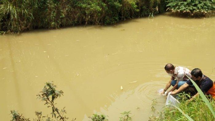 3.000 Benih Ikan Nila Ditebar di Beberapa Sungai Wilayah Karanganyar