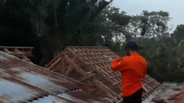 BPBD Kabupaten Pekalongan mengecek lokasi pohon tumbang di Desa Karanganyar Gang 6, RT 04 RW 01, Kecamatan Tirto, Kabupaten Pekalongan, Jawa Tengah