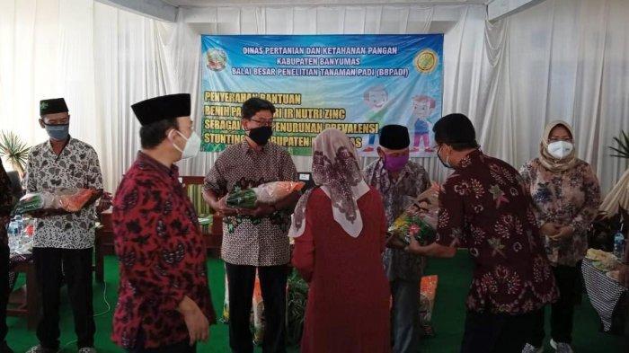 Bupati Banyumas Serahkan 3 Ton Benih Padi Varietas Inpari IR Nutri Zinc untuk 3 Desa di Cilongok