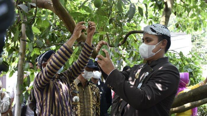 Bupati Dico Tinjau Gondang Limbangan Desa Wisata Percontohan di Kendal