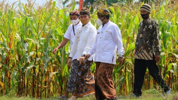 Hartopo Alokasikan Rp 6,6 miliar Guna Tingkatkan Kapasitas Kelembagaan Petani