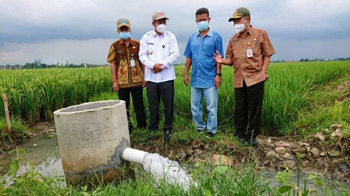 Petani Desa Klareyan Mengeluh Kekeringan saat Kemarau, Pemkab Pemalang Bangun Sumur Senilai 800 Juta
