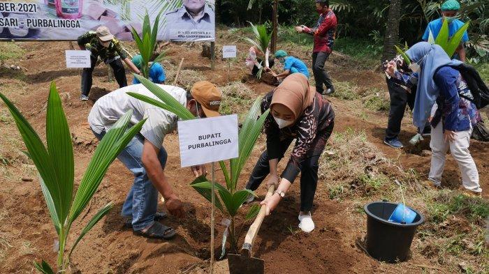 Dapat Bantuan Bibit Kelapa, Bupati Tiwi Ingin KUB Ekspor Langsung Produk Gula Kristal Organik