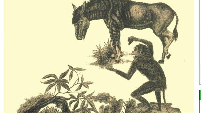 Fabel Keledai yang Ingin Menjadi Zebra