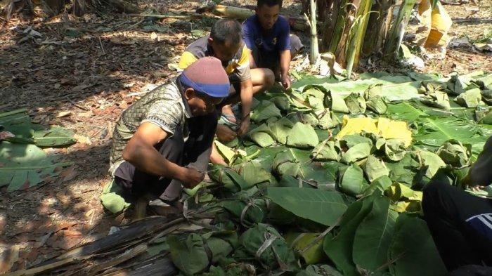 Daun Jati Desa Kaibahan Pekalongan Melimpah, Dimanfaatkan Warga Sebagai Bungkus Daging Kurban