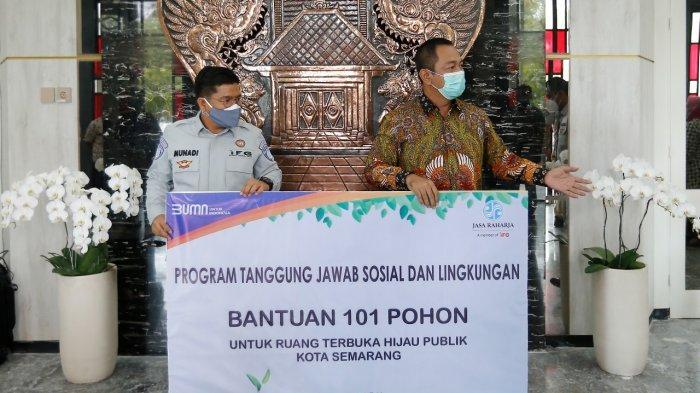 101 Pohon Tabebuya Siap Ditanam di Kota Semarang