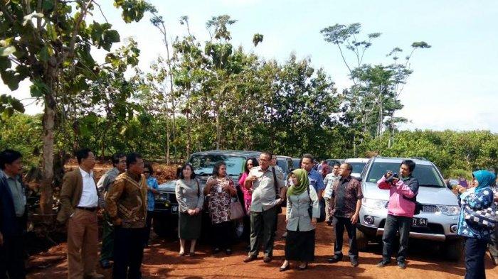 Dirjen Perkebunan RI Tinjau Lokasi  Industri Pengolahan Kakao di Batang