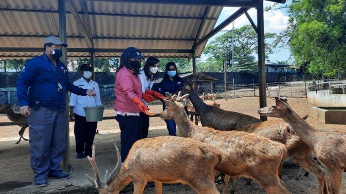 Disbudpar dan PKK Kota Semarang Donasi Pakan Hewan untuk Semarang Zoo