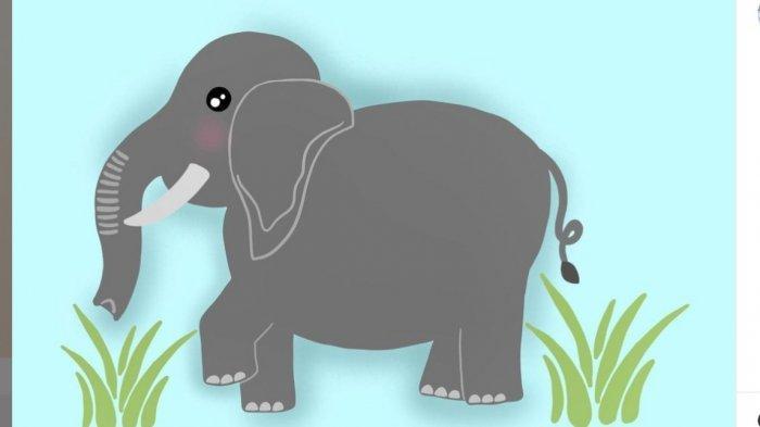 Dongeng Gajah Besar yang Kesepian