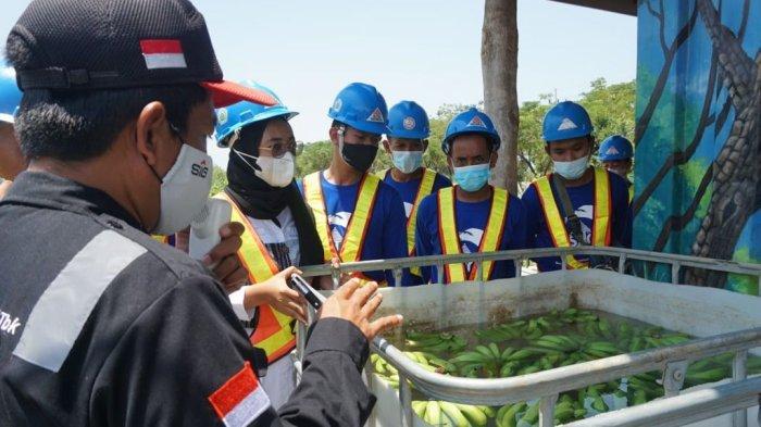 Edukasi budidaya pisang Cavendish dan peternakan ikan di Ecopark Semen Indonesia