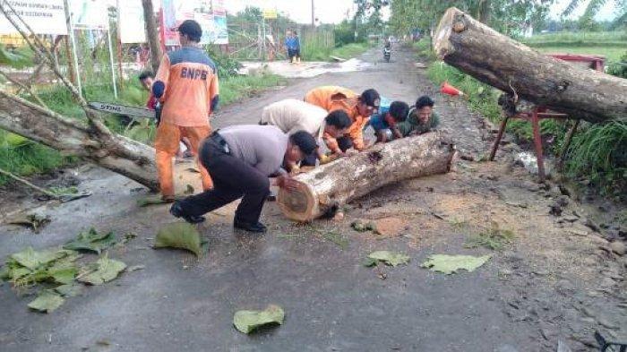 Hotline Semarang Hari Ini: Batang Pohon Berjatuhan di Jl Abdurahman hingga Pelayanan Dispendukcapil