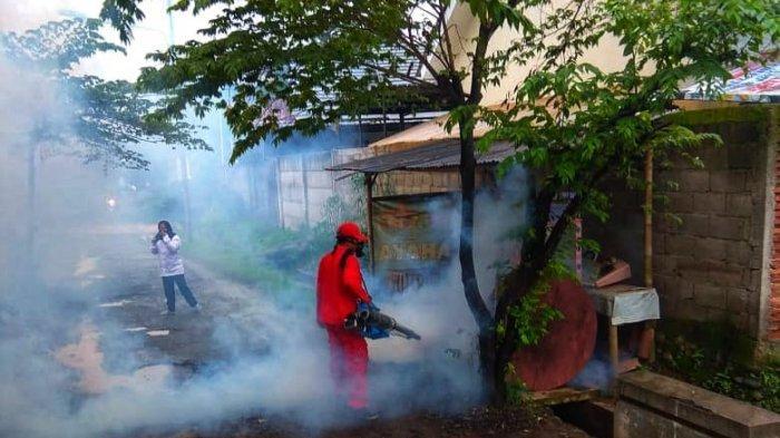Duh, Empat Kelurahan di Pekalongan Ini Sudah Berstatus Endemis DBD