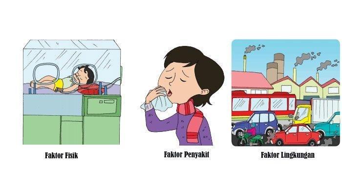 Kunci Jawaban Tema 2 Kelas 5 Halaman 51 52 53 54 Subtema 2 Pentingnya Udara Bersih bagi Pernapasan
