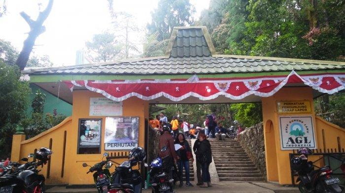 Jalur Pendakian Gunung Lawu Sudah Dibuka Pendaki Diimbau Untuk Tetap Berhati Hati Tribun Jateng