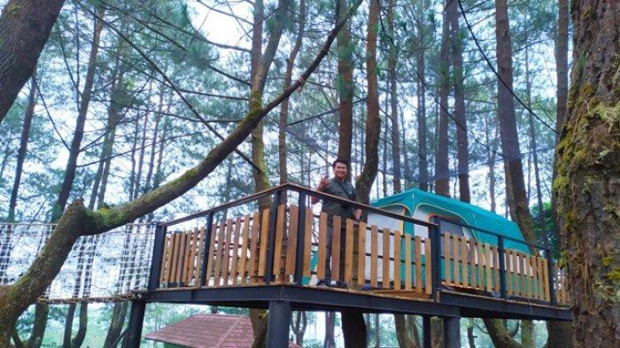 Ingin Rasakan Sensasi Camping di Atas Pohon Pinus? Ke Golaga Purbalingga, Ada Wahana Glamour Camping