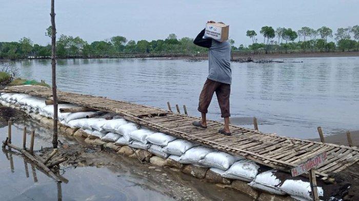 Warga gotong-royong membuat tanggul dan jalan di Dukuh Simonet, Desa Semut, Kecamatan Wonokerto, Kabupaten Pekalongan, Jawa Tengah.