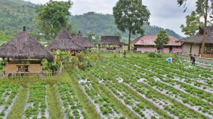 Mulai Senin Pembayaran Tiket Masuk ke Objek Wisata Guci Menggunakan Non Tunai