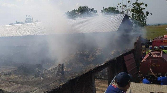 Kebakaran Gudang Kapuk di Karaban Pati, Tiga Orang Alami Luka Bakar