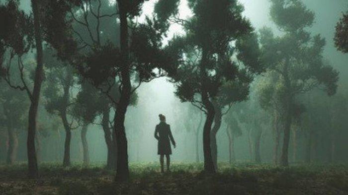 Misteri Seorang Gadis Tewas Tanpa Busana di Hutan, 64 Orang Dipanggil Jadi Saksi