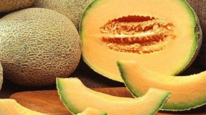 Cara Memilih Melon yang Dijamin Manis Berair, Jangan Beli Melon dengan Ciri-ciri Ini