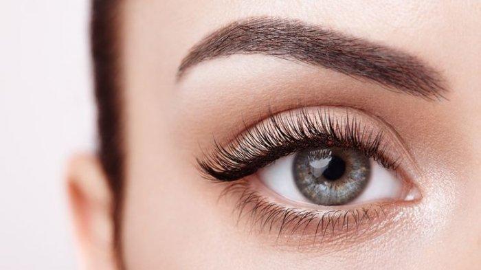 Tak Perlu ke Salon, Ini 5 Cara Memanjangkan Bulu Mata secara Alami