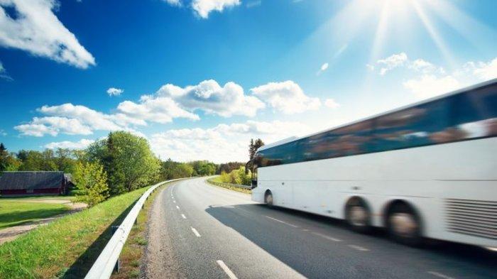 Hindari Kecelakaan, Ini 4 Hal yang Perlu Diketahui saat Berkendara di Sekitar Truk dan Bus Besar