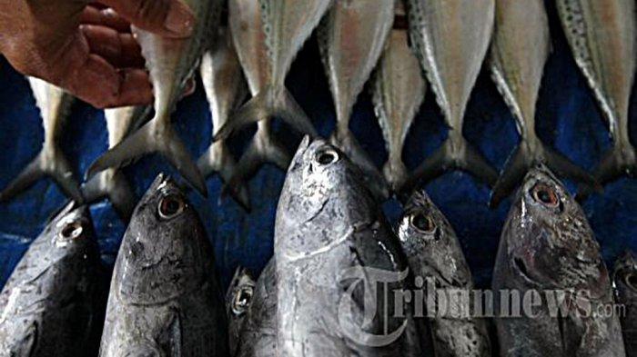 Emak-emak Batang Banyak Kemakan Mitos Pantang Makan Ikan Pas Hamil: Mitos Salah! Bikin Anak Stunting